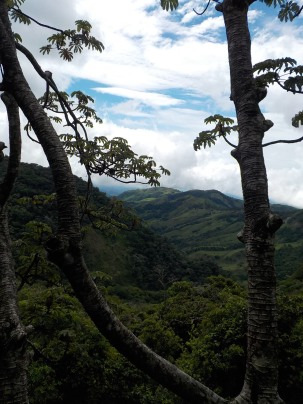 View from trail - Monteverde Inn