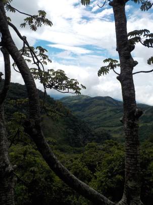 View from trail - Monteverde Inn