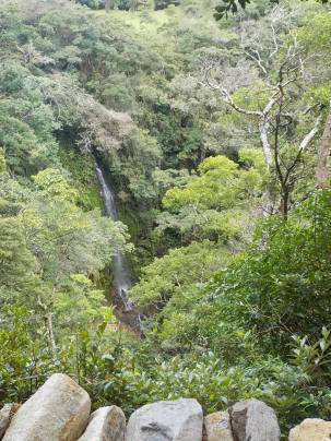 Waterfall in Monteverde; view from Monteverde Inn