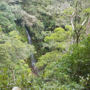 Waterfall in Monteverde; view from Monteverde Inn